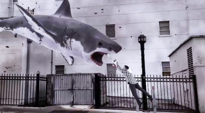 Sharknado Invades the Swamp